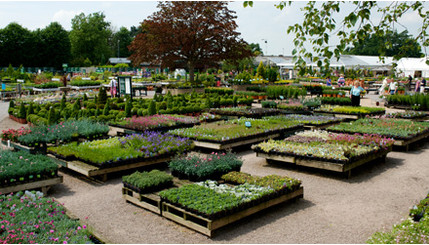 Edgworth and District Horticultural Society Visit to Dorothy Clive – Plant World Nursery and Garden Center
